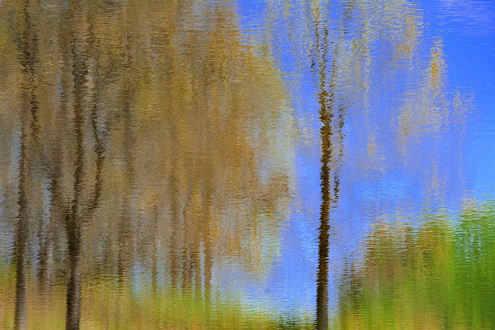 High Summer Abstract Lake Reflection