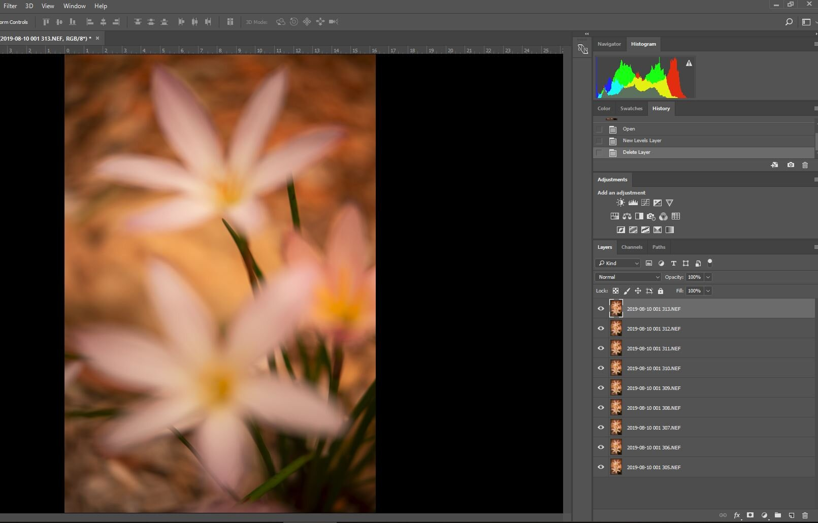 """Photoshop CC focus stack of 8 images, created using Lightroom CC's """"Open as Layers"""" in Photoshop option"""