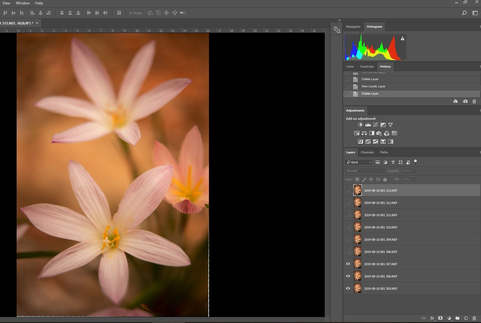 """Flower 1, with only its """"sharp"""" layers revealed."""