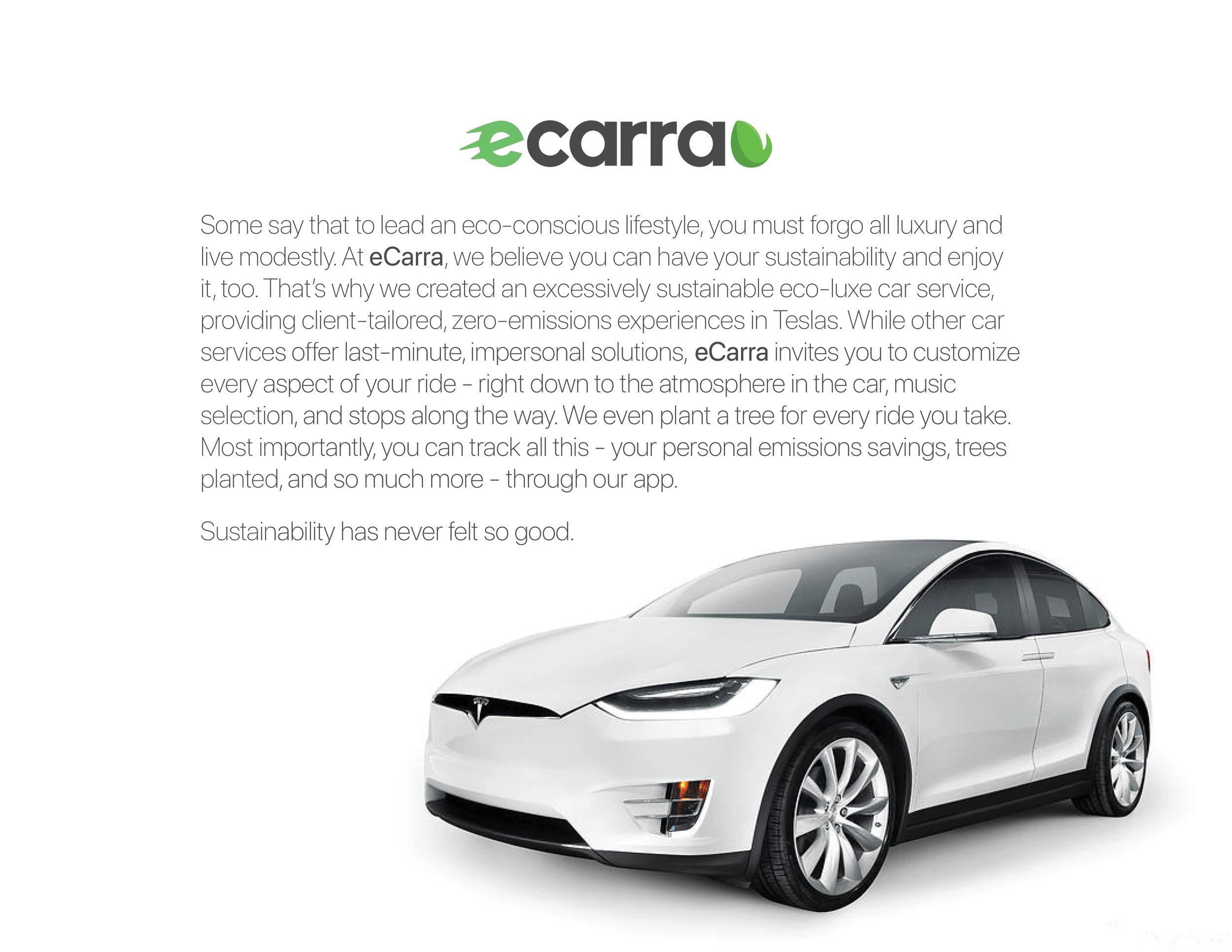 eCarra Tesla Package2.jpg