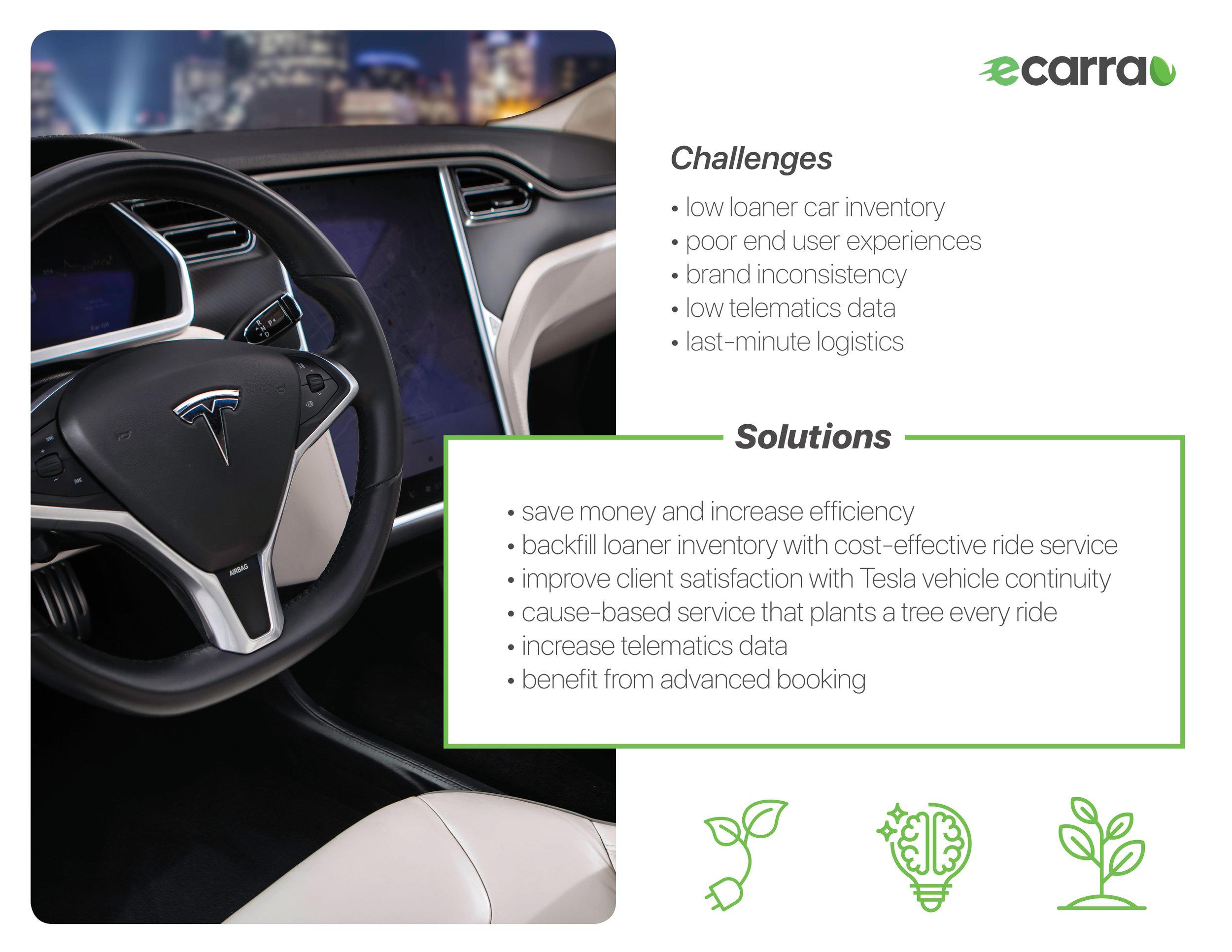 eCarra Tesla Package3.jpg