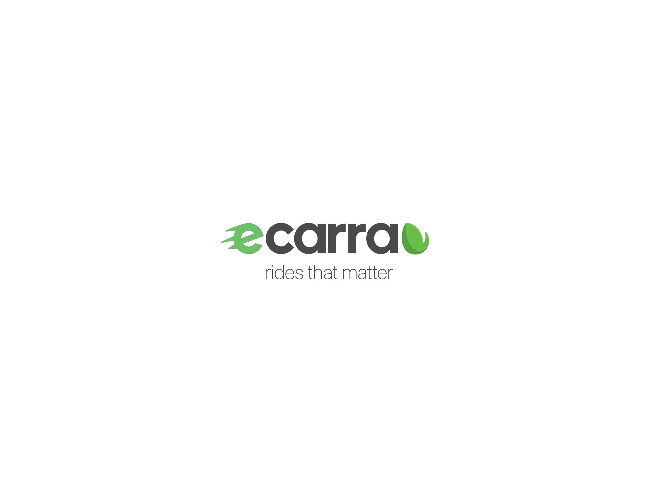 eCarra Tesla Package.jpg