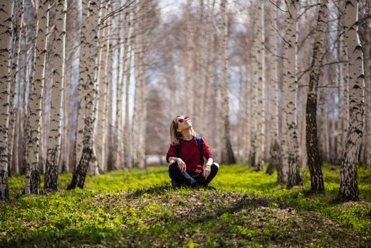 nature2.jpeg