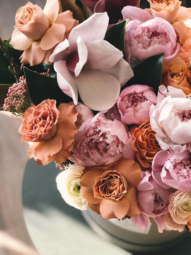 beautiful-birthday-blossom-931162.jpg