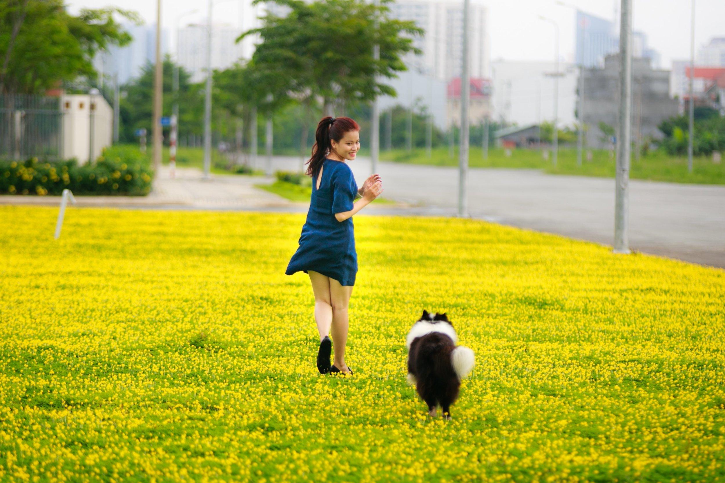 adult-blur-canine-2138696.jpg