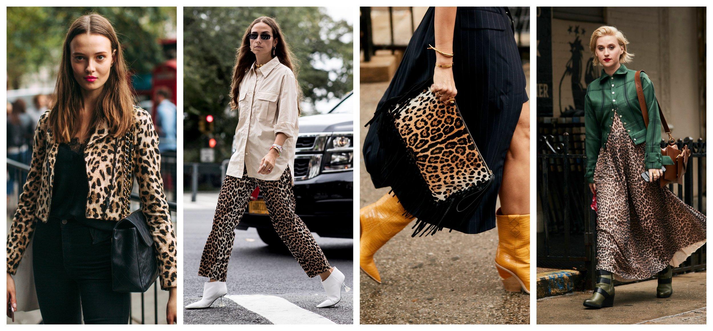cheetah girls.jpg