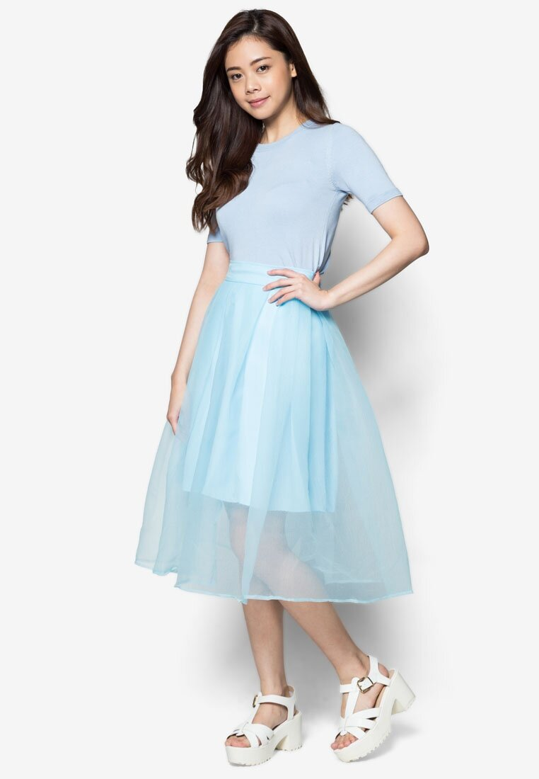 Cat in the bowl Organza Overlay Midi Skirt