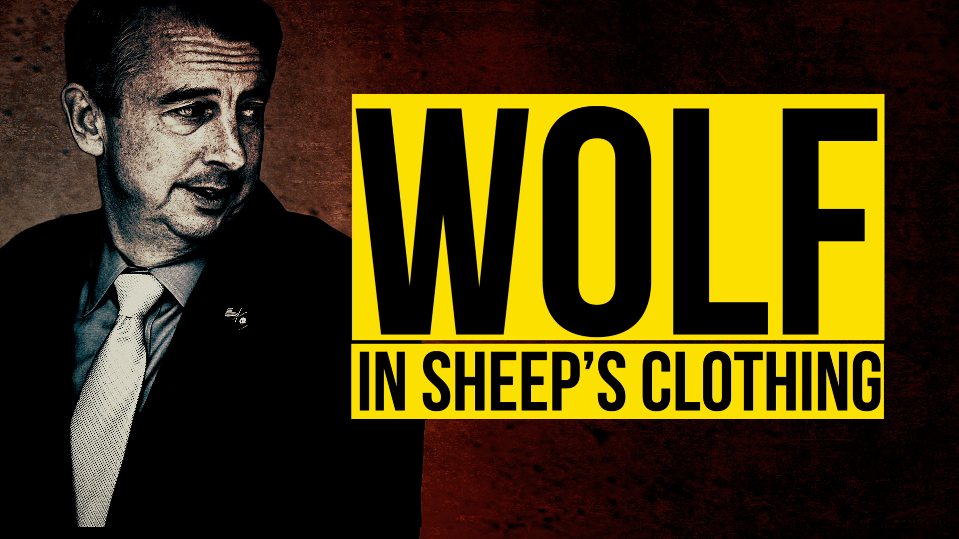 WOLF IN SHEEP'S CLOTHING–ENGLISH