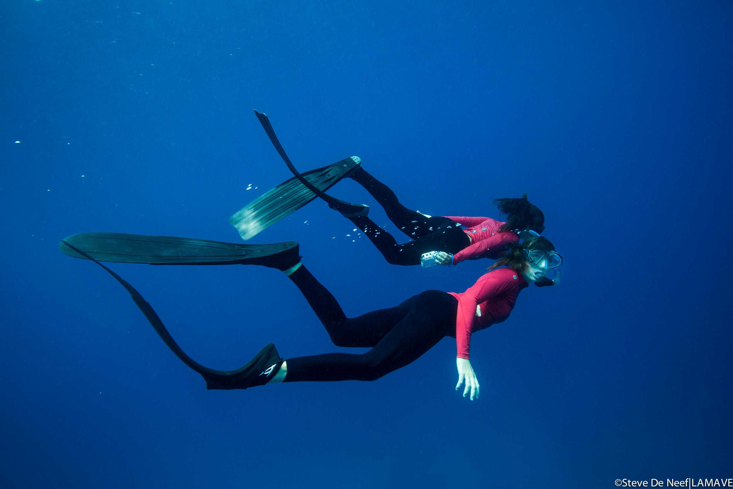 volunteer-lamave-snorkel-blood-red.jpg