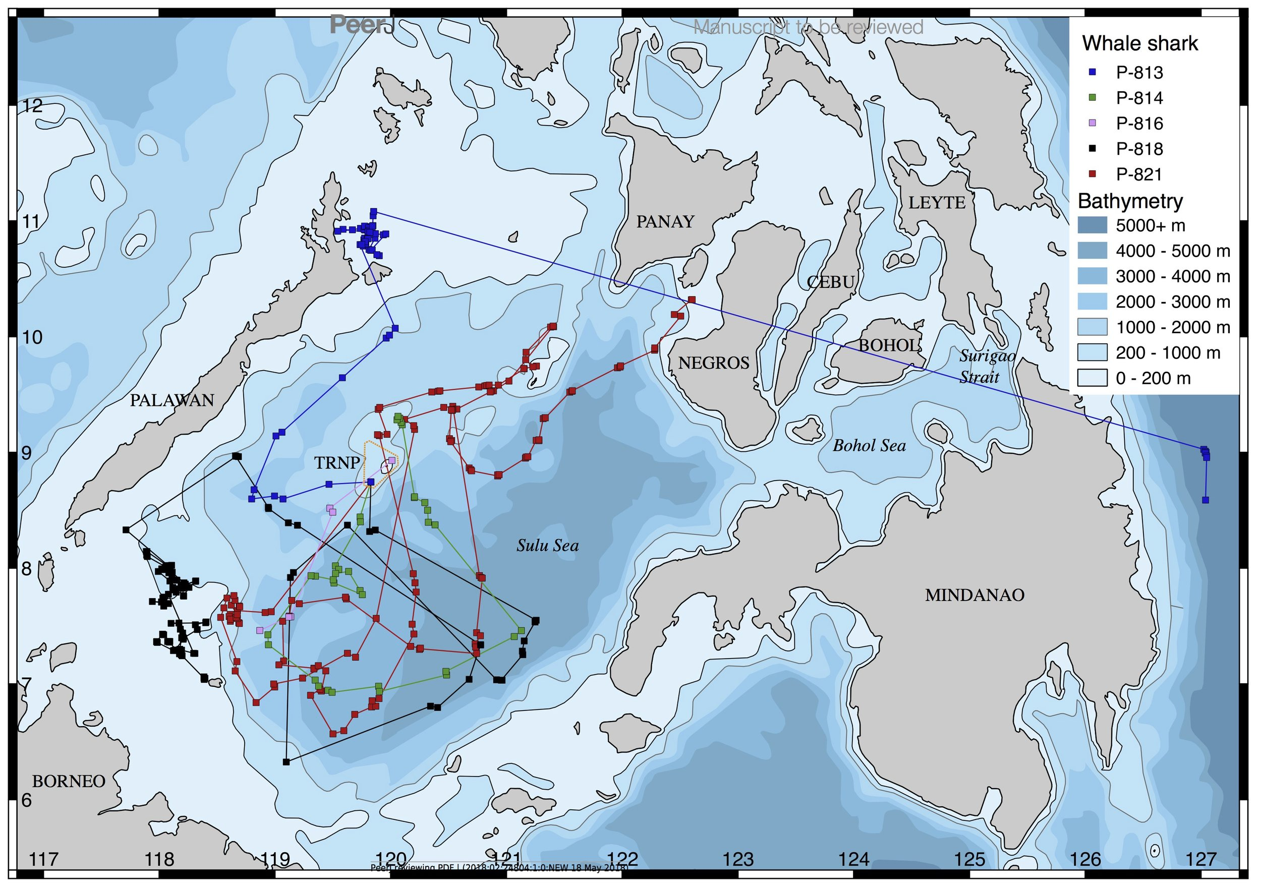 Satellite tracks of whale sharks tagged in TRNP.