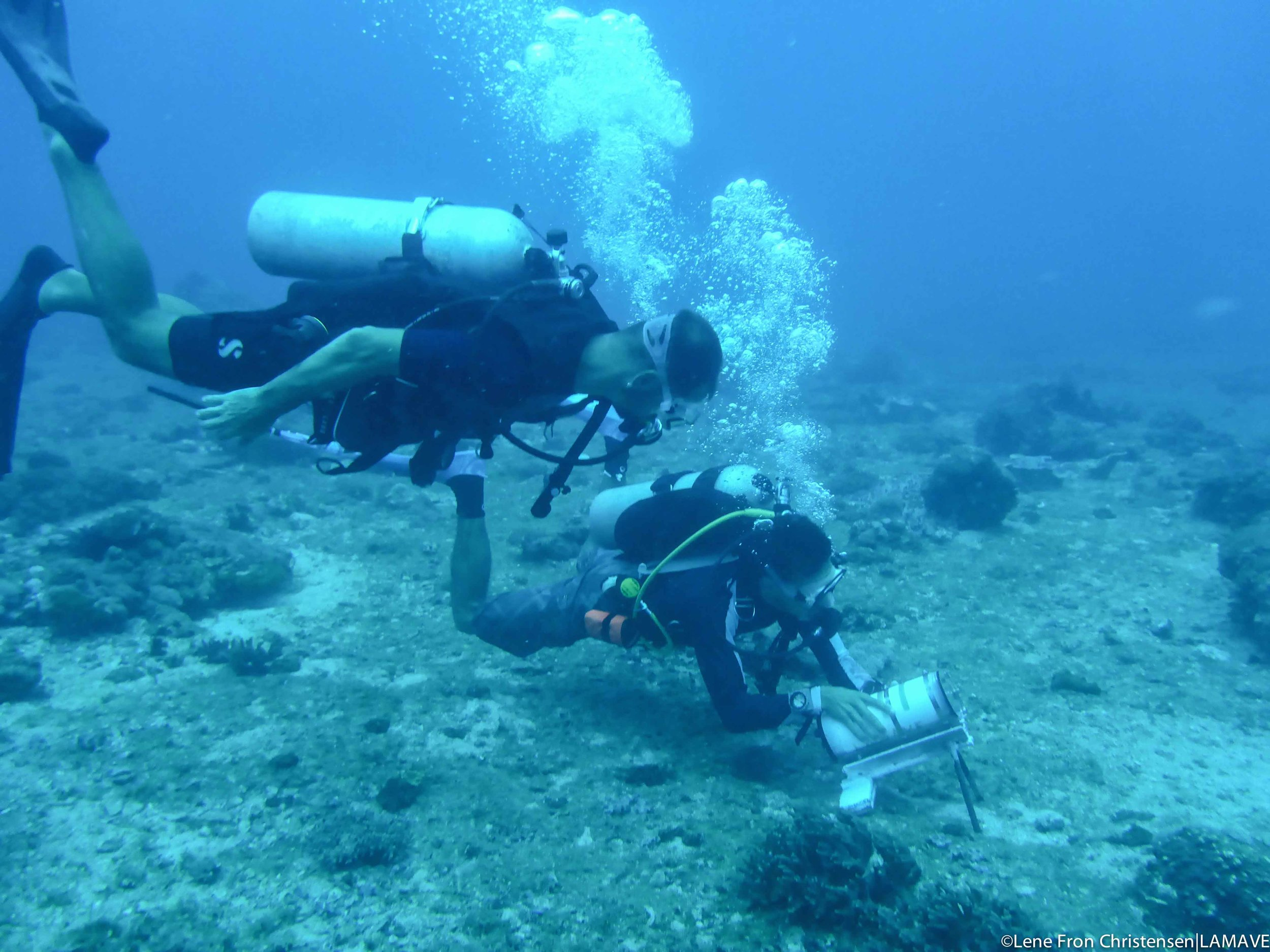 The team carefully position a Remote Underwater Video (RUV) used to record manta ray visitation to the site.