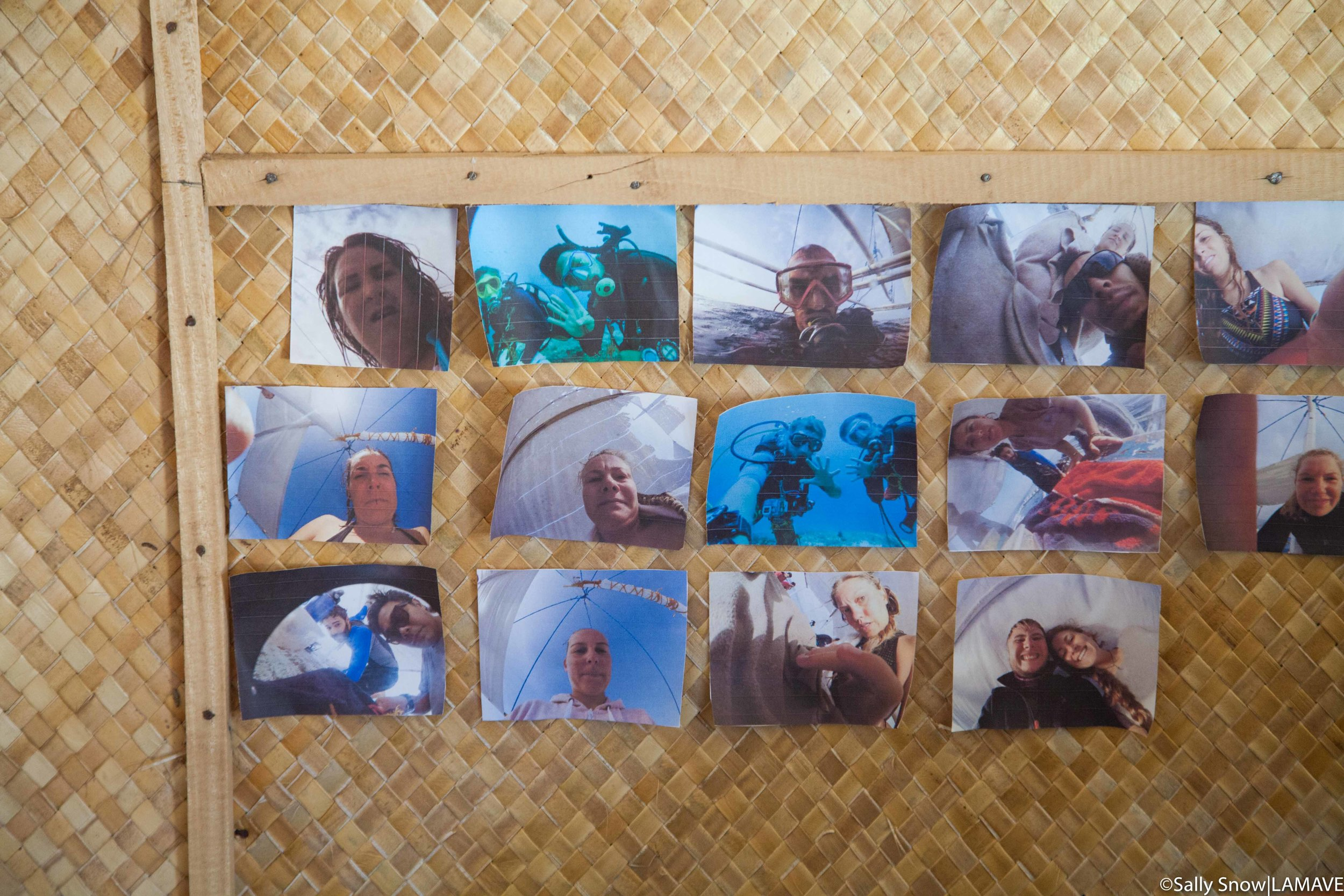 Caught on camera! Previous team members who have contributed to the project are immortalised on the office wall of fame - screenshots from the Remote Underwater Video System.