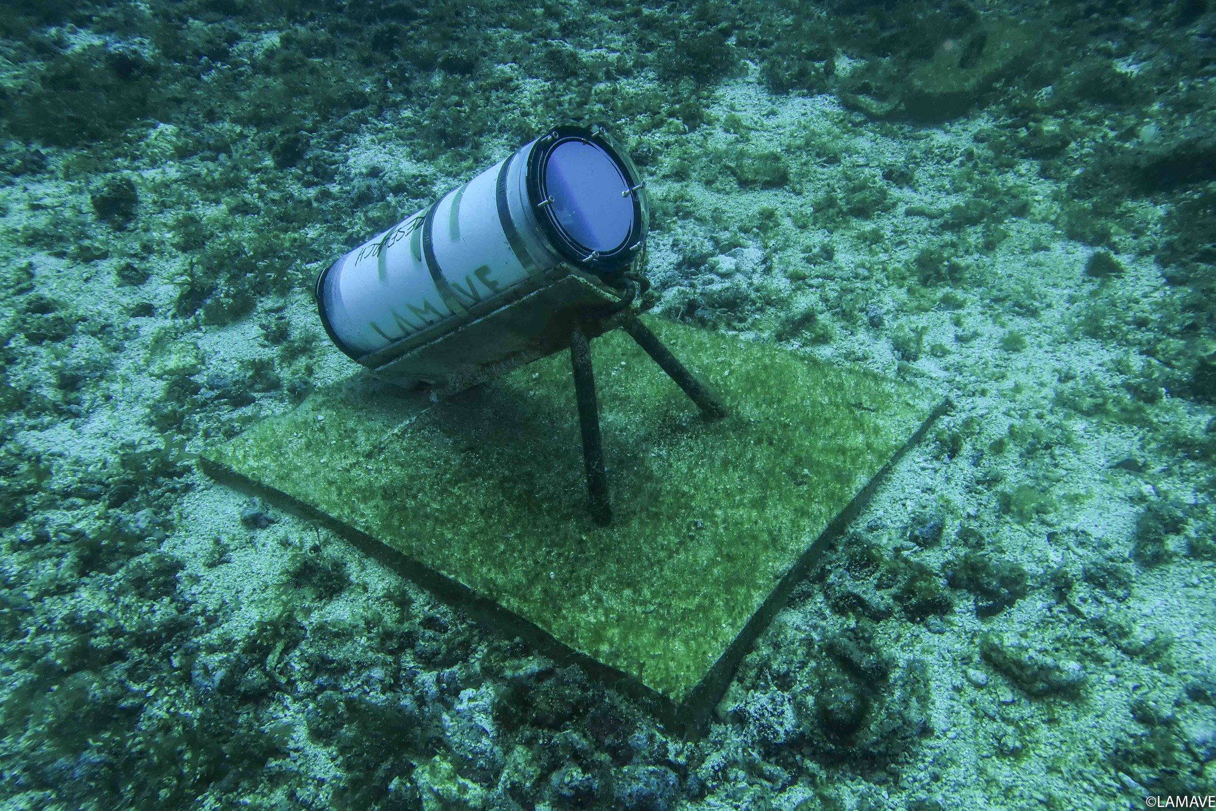 A Remote Underwater Video (RUV) System deployed by the team. The waterproof casing protects a camera and battery pack that allows the team to record a continuous timelapse to capture photographs of mantas and other species visiting the cleaning stations in Manta Bowl.