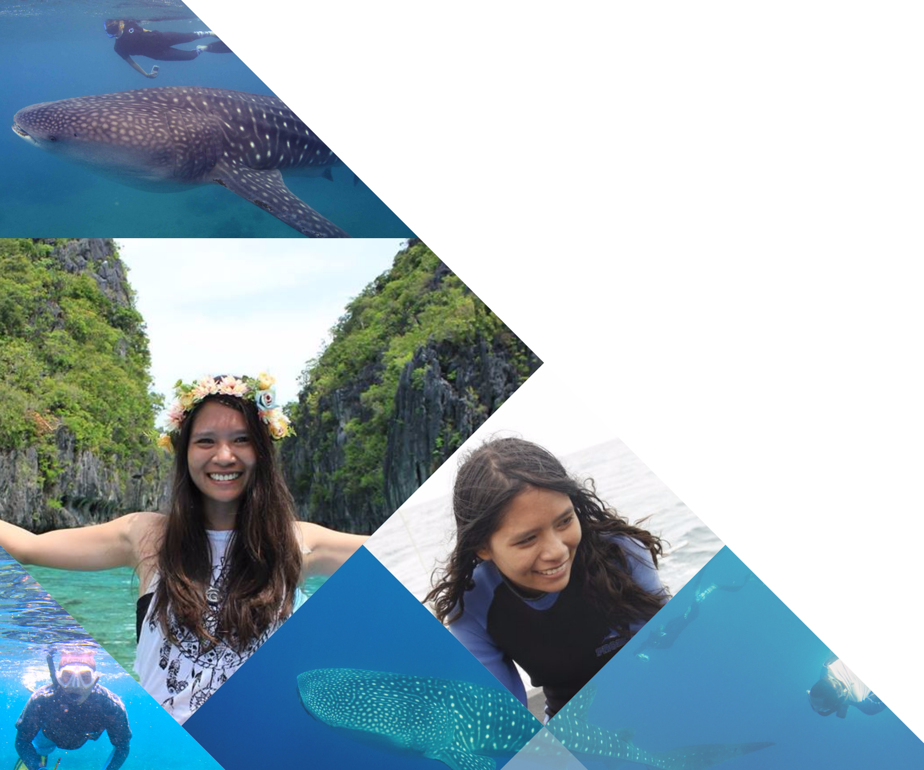 """""""LAMAVE is a place where young marine conservationists can kickstart their careers... a place for dreamers, marine biologists who want to achieve their goals. It is a great stepping stone.""""   - Portia Antig"""