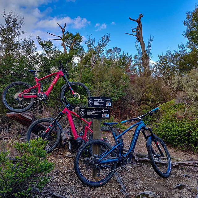 Peaking Ridge and 629 in an hour and a half, after a full day at work. Yup, it's possible on these bikes! . . . #focusebikes #focusjam2 #focussam2 #mountainbiking #mountainbike #mtb #bike #mtblife #mtblifestyle #cycling #bikes #instamtb #ews #mtbtrail #mtbnz #nelsonmtb #nelsonnz #ebikes #ebiking #emtb #emountainbike #peakingridge #629 #nelsontrails #ebikeshop #ebikelife #ebikestyle #mountainbiker #bikelife