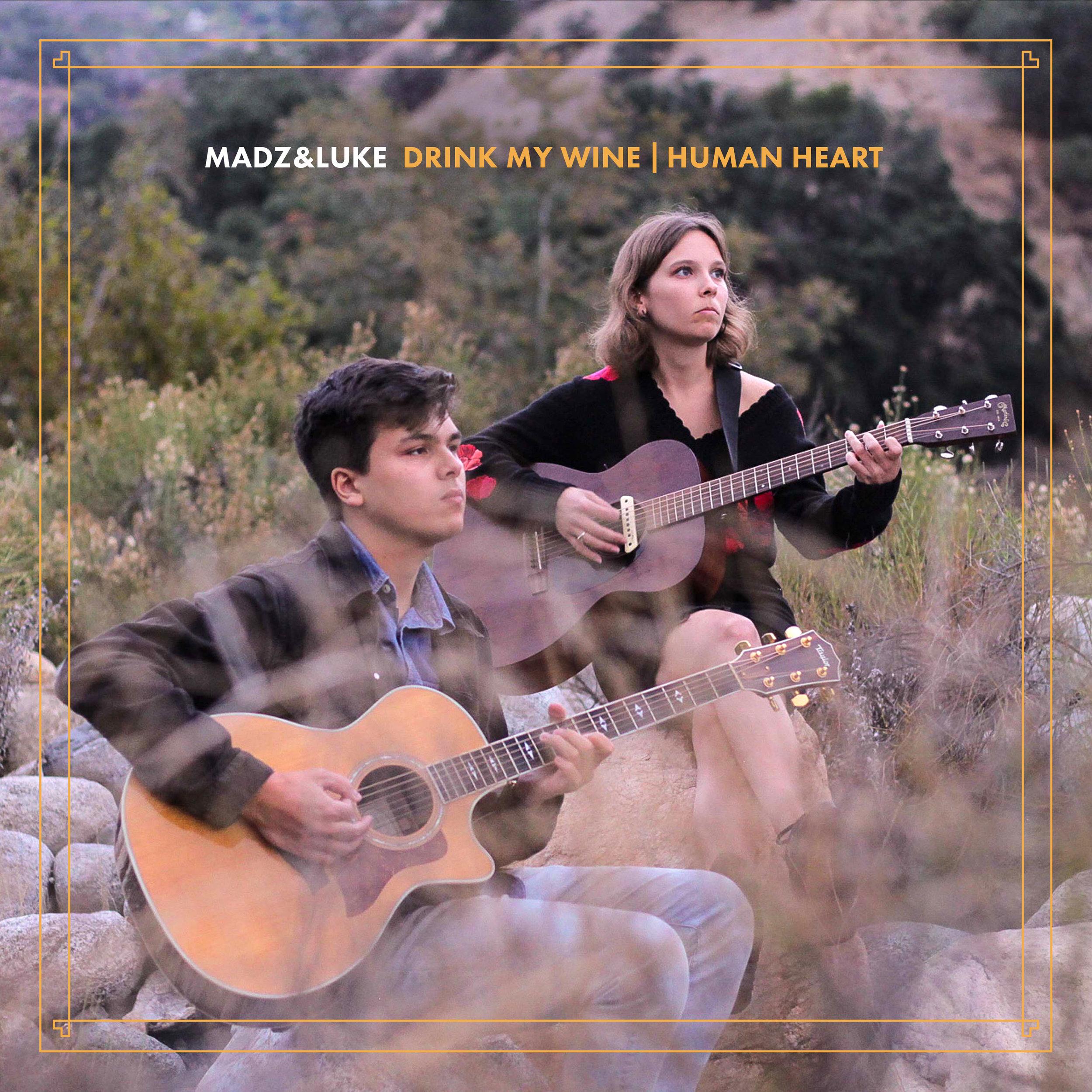 Madz & Luke DMW : HH FINAL ALBUM ART.jpg