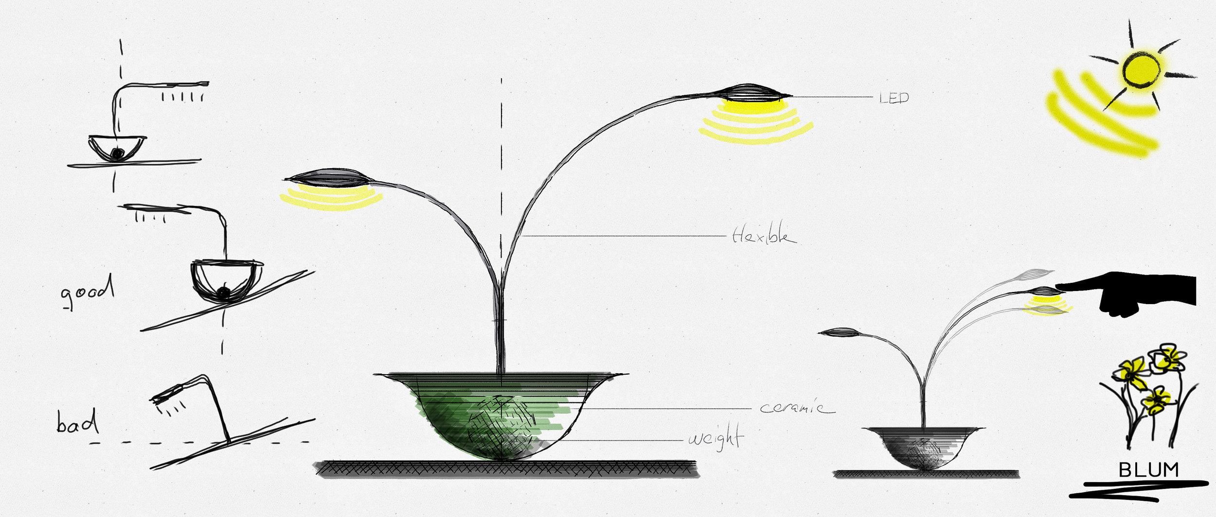 blume lamp design.jpg