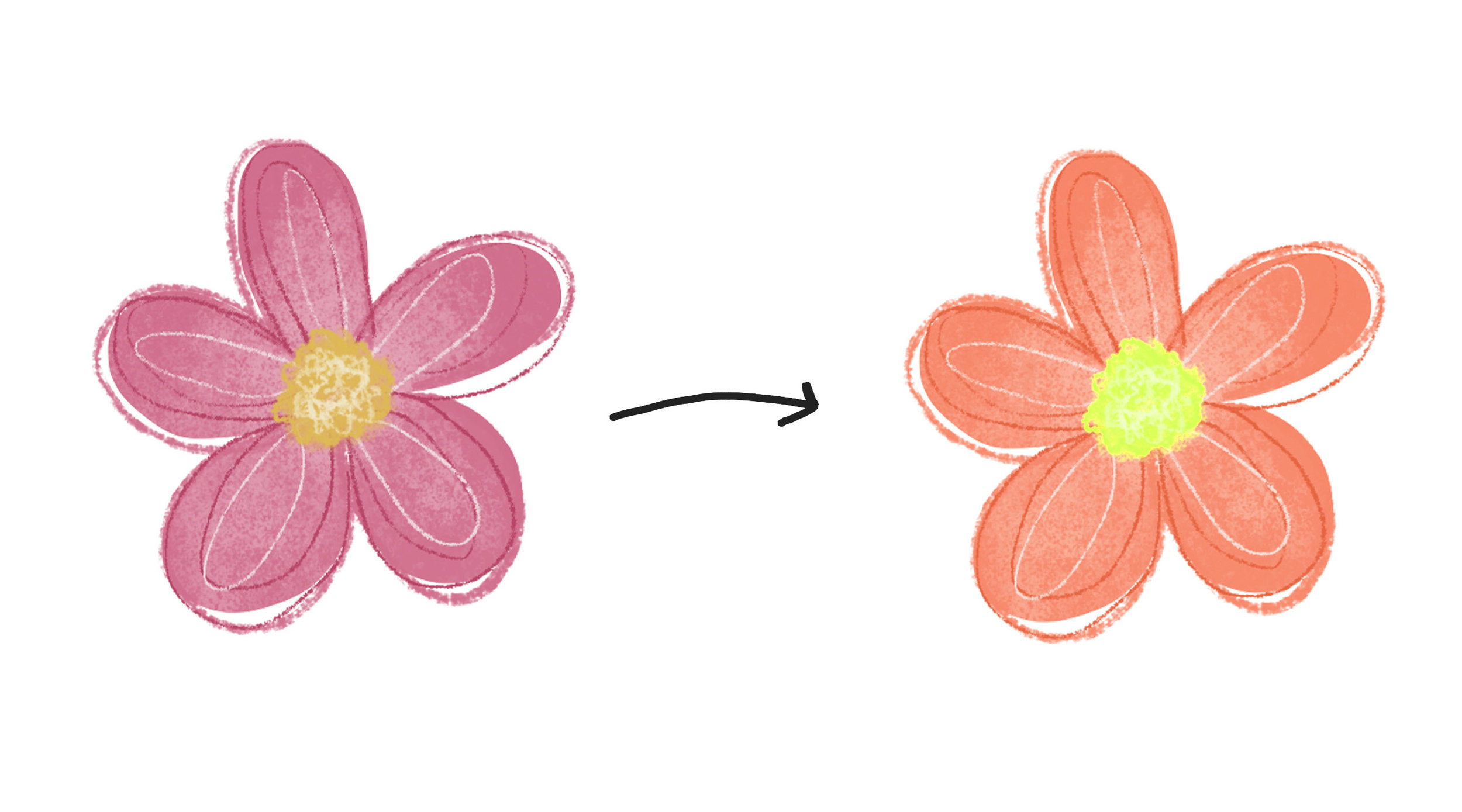 pink to orange.jpg