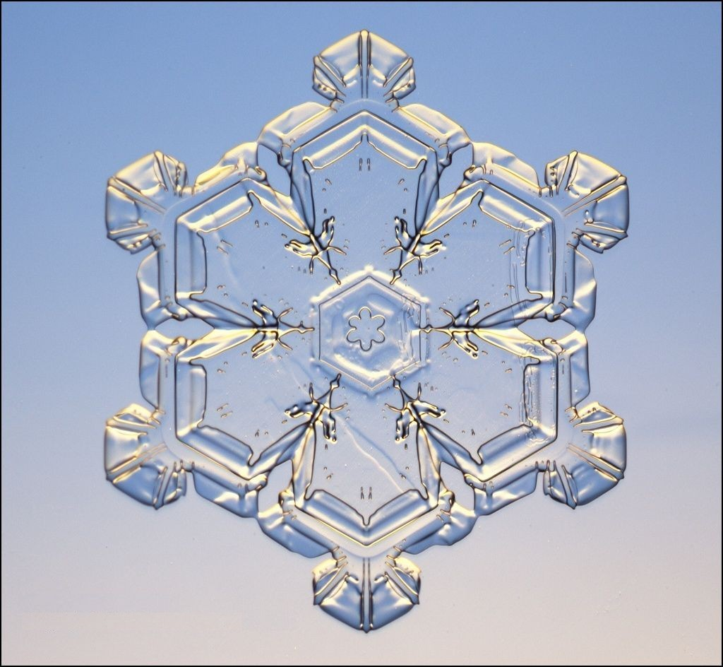 Cell Vortexs--Pictures--Snowflake for E3 Systems.jpg