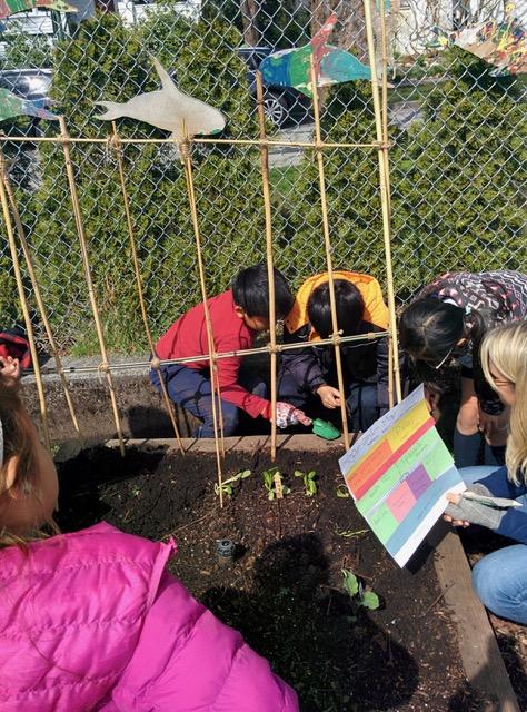 gardenbuddies12.jpg