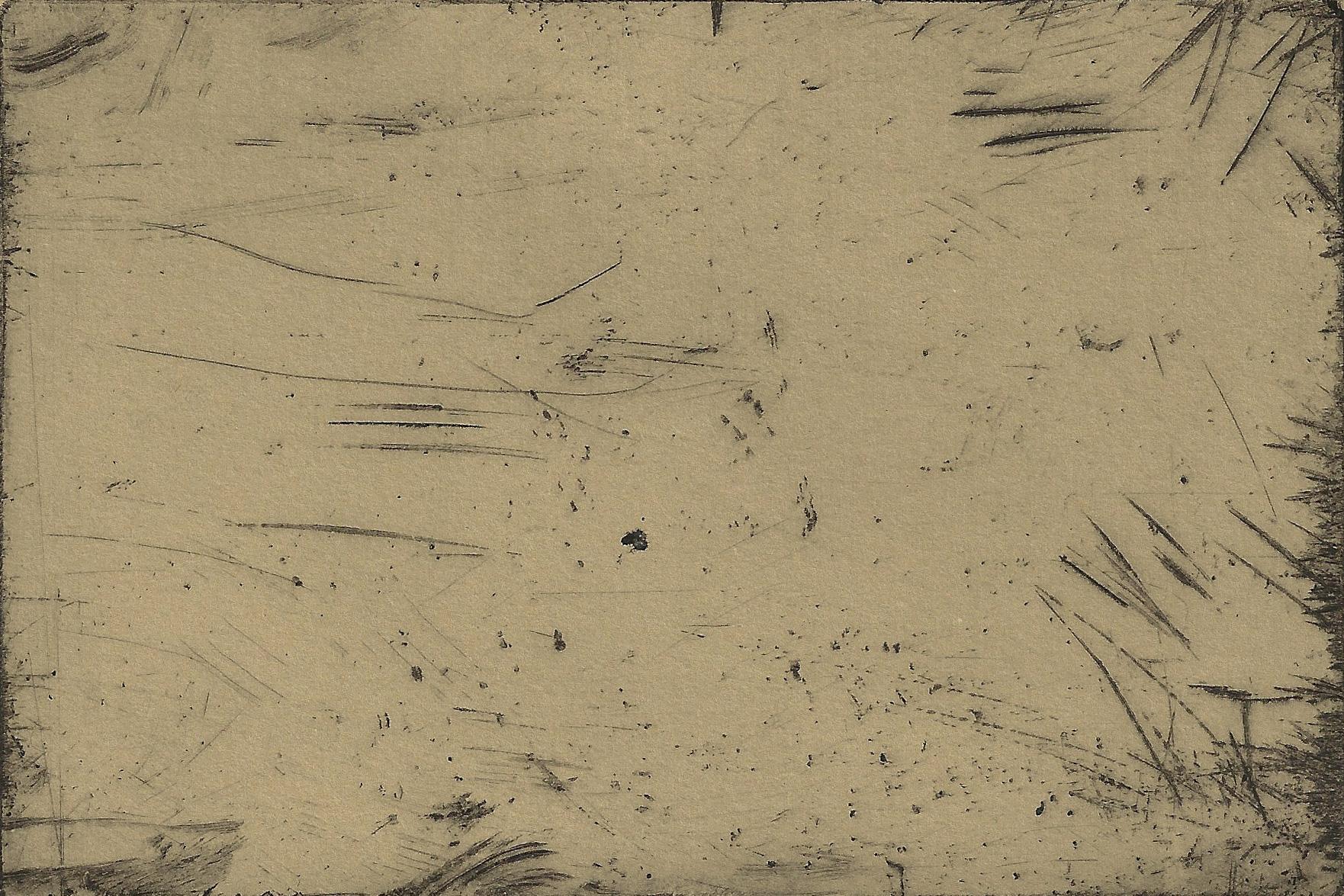 october sequence tree - close-up (tan).jpg