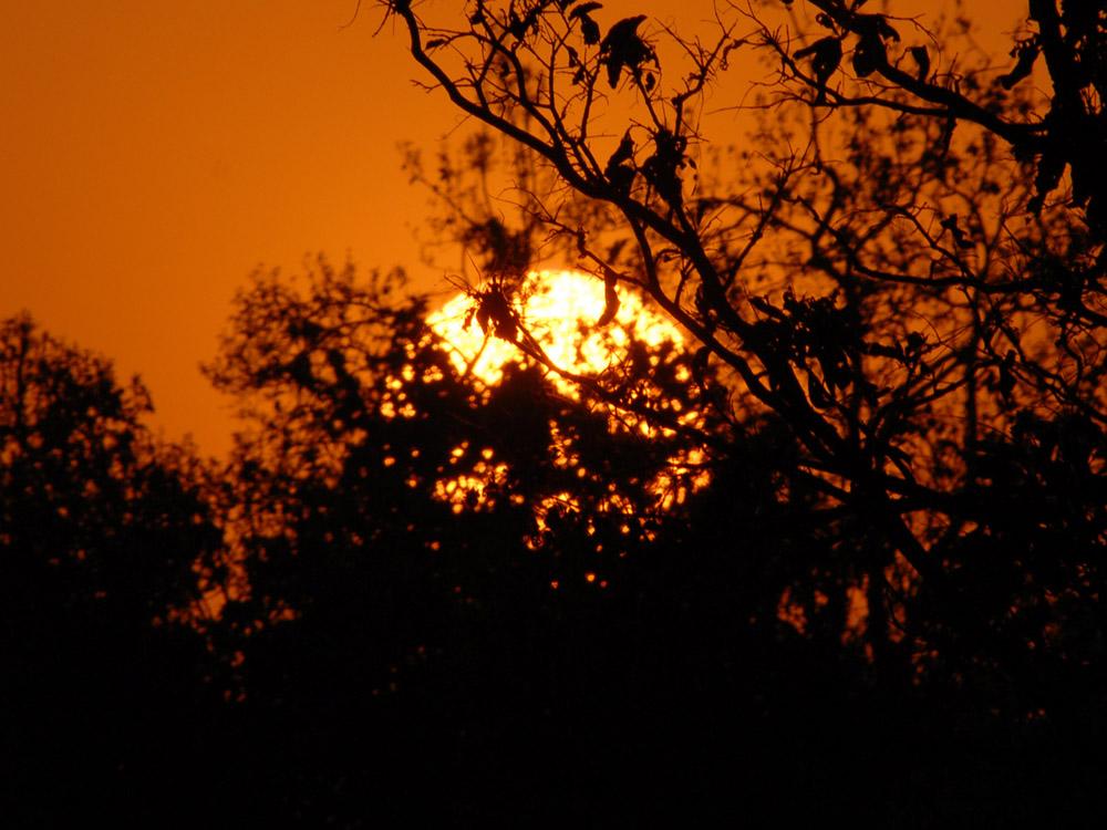 103 sunset.jpg