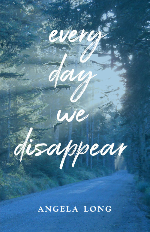Every Day We Disappear by Angela Long