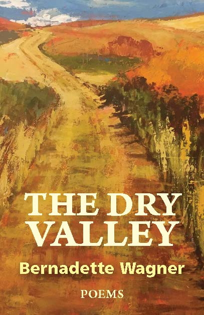 bookcover final The Dry Valley Aug 25.jpg