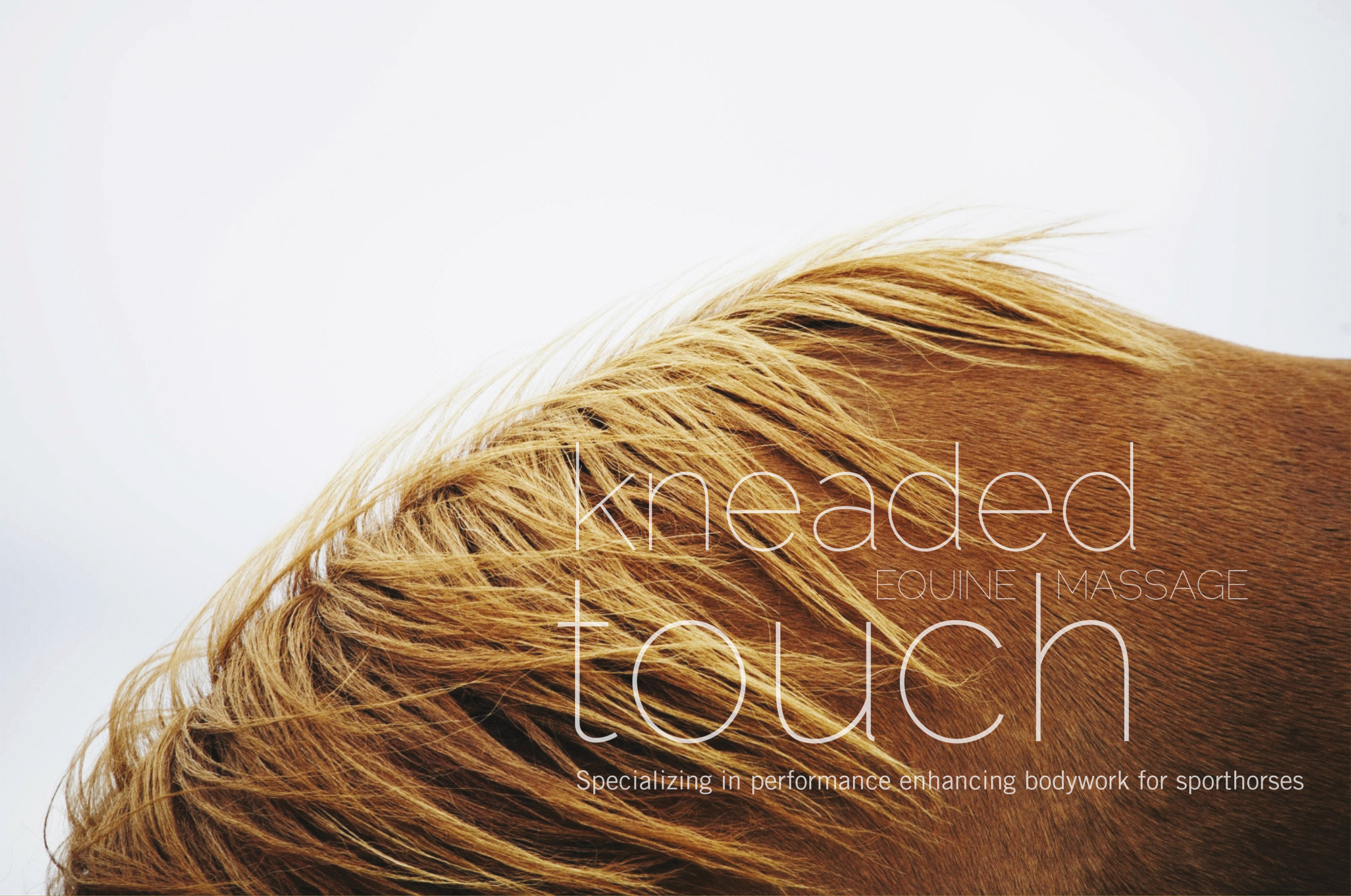 Logo + Identity for Kneaded Touch Equine Massage