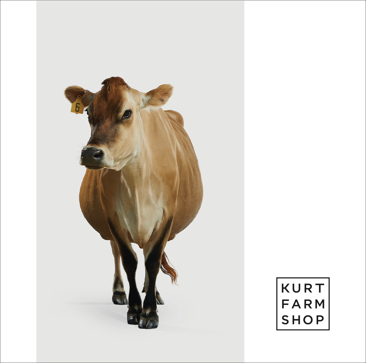 Kurt Farm Shop | Postcard
