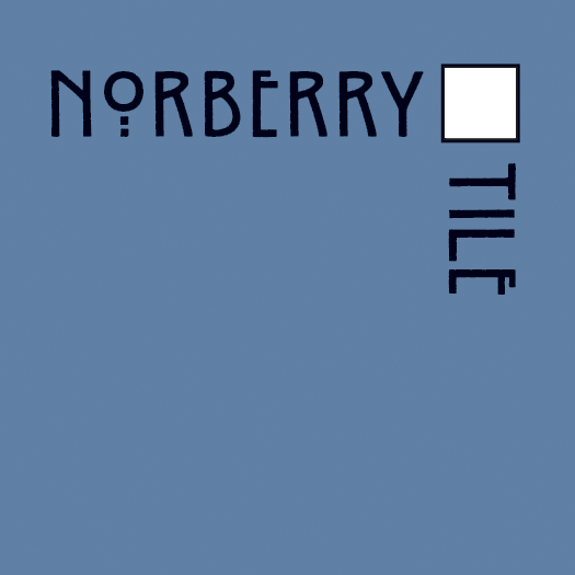 NT_Logo_blue-wht.png