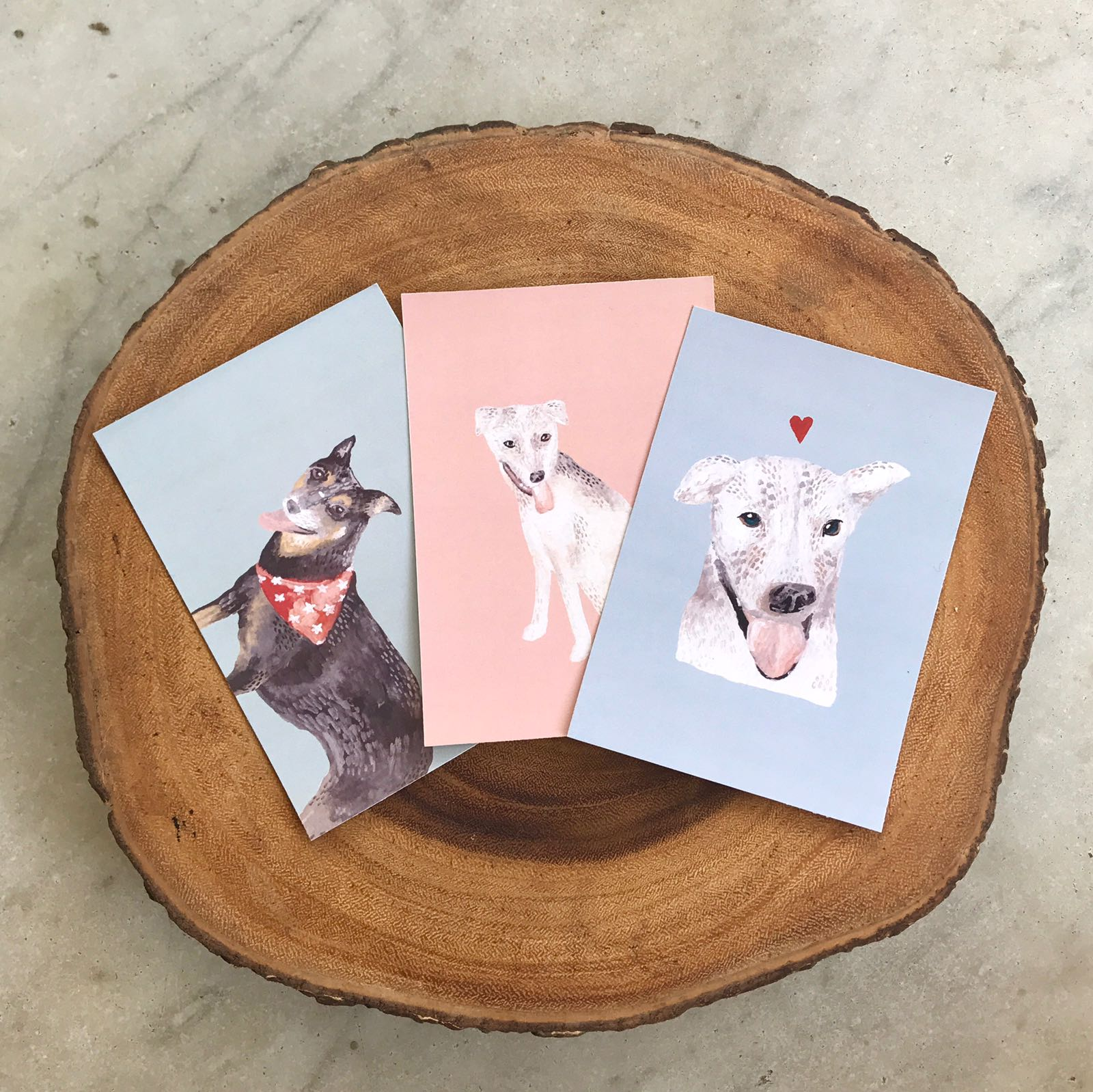 POSTCARD SET - Featuring all 3 Oscas Dogs!