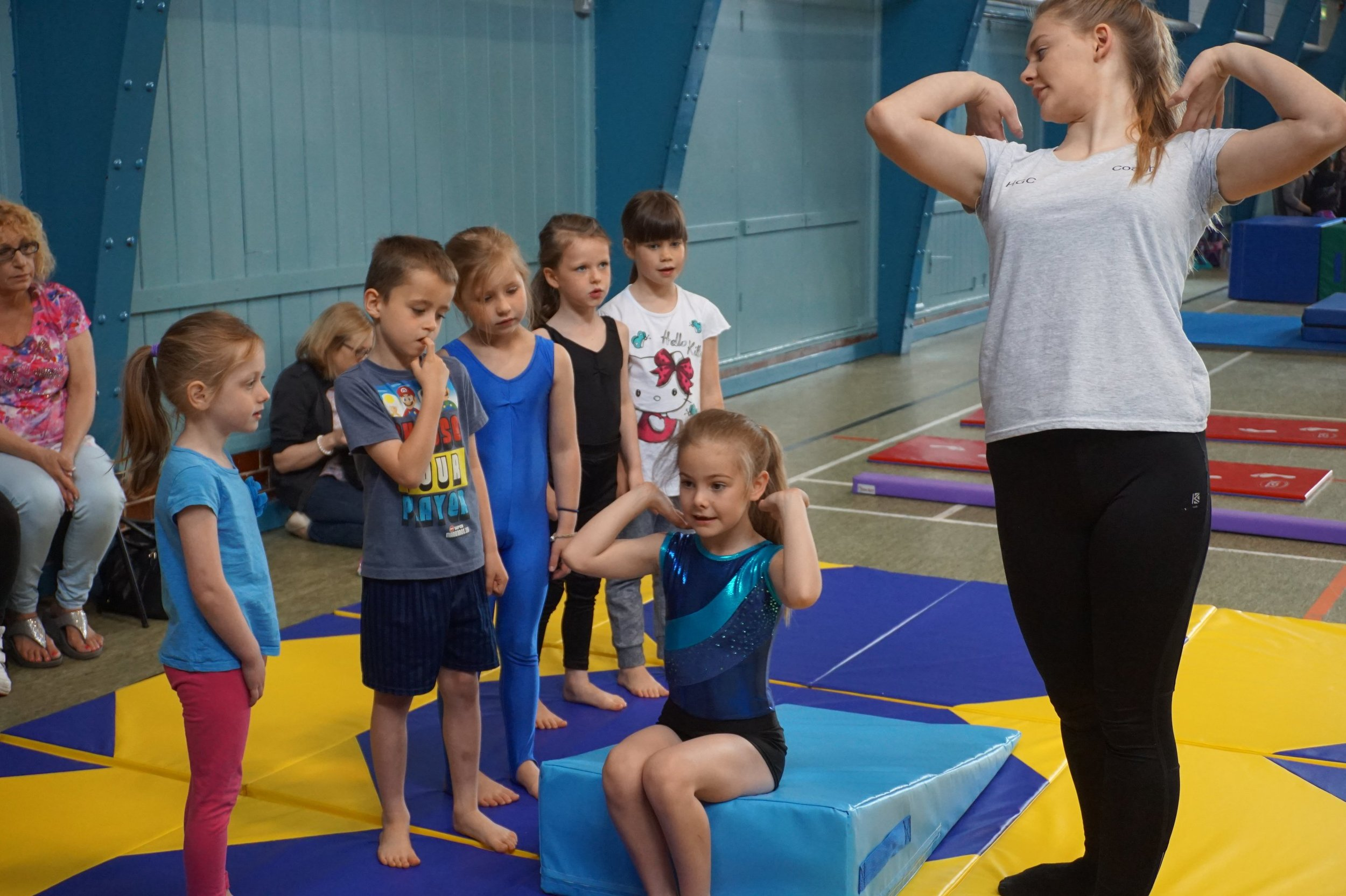 herts-gymnastics-club-pic.JPG