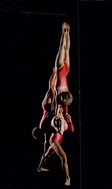 flips-gymnastics2.jpg