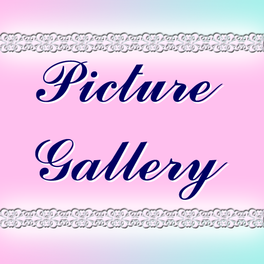 Picture Gallery2.png
