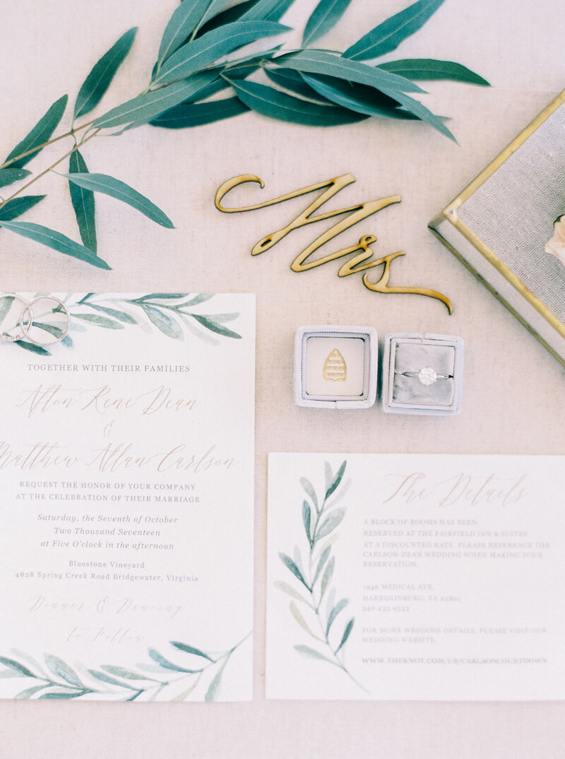 bluestone-vineyard-wedding-bridgewater-va.jpg