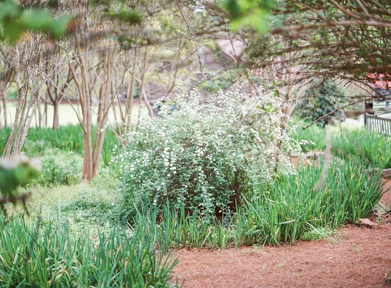 ashley-salter-the-bachelor-serenbe-farms-wedding-12-min.jpg