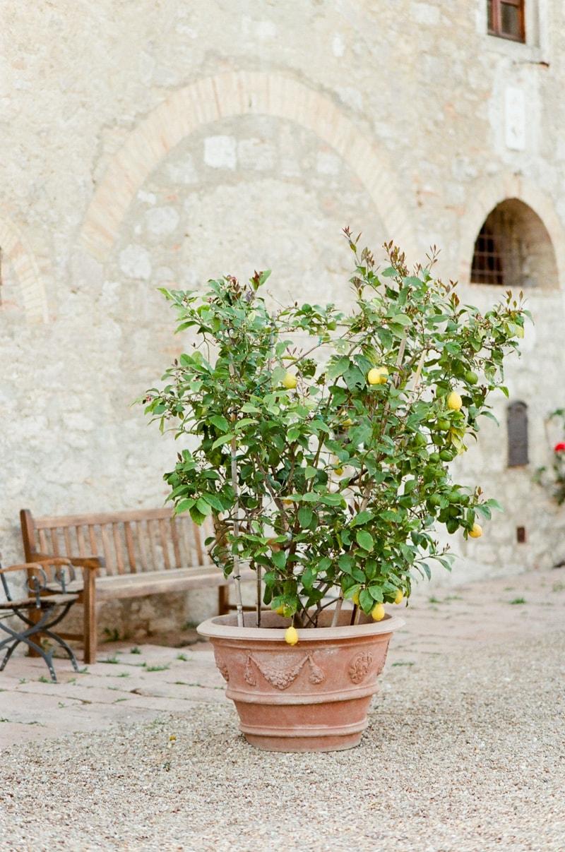 borgo-pignano-tuscany-italy-wedding-photos-30-min.jpg