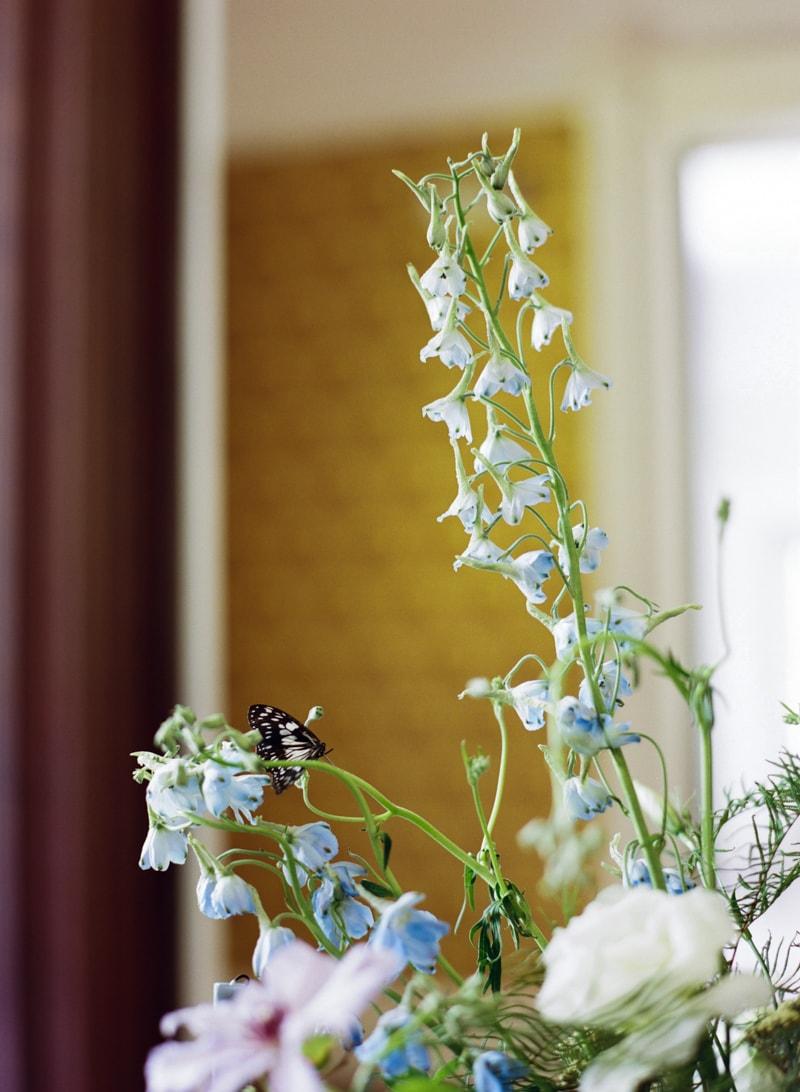 butterflies-at-weddings-fine-art-film-trendy-bride-12-min.jpg