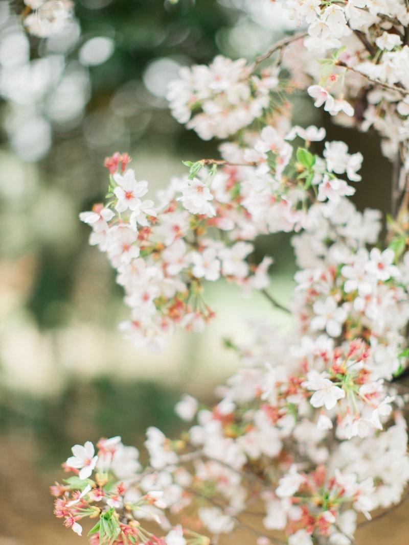 agecroft-hall-richmond-virginia-wedding-inspiration-8-min.jpg