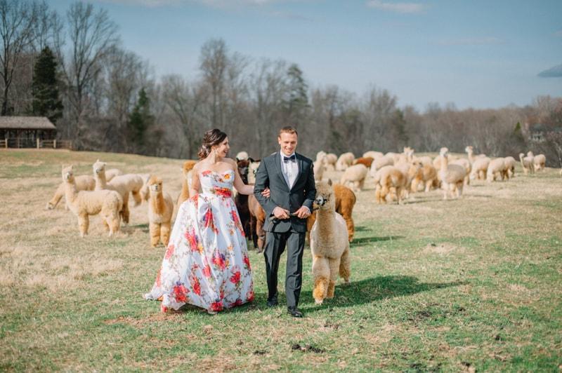 historic-cedar-hill-plains-virginia-wedding-shoot-31-min.jpg