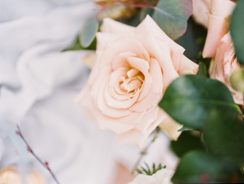 red-lily-vineyards-wedding-inspiration-contax-645-12-min.jpg