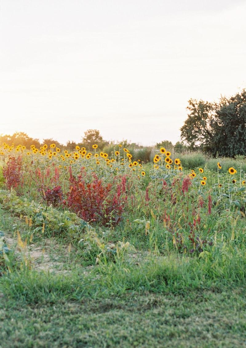 farmhouse-wedding-hazelfield-farm-kentucky-6-min.jpg