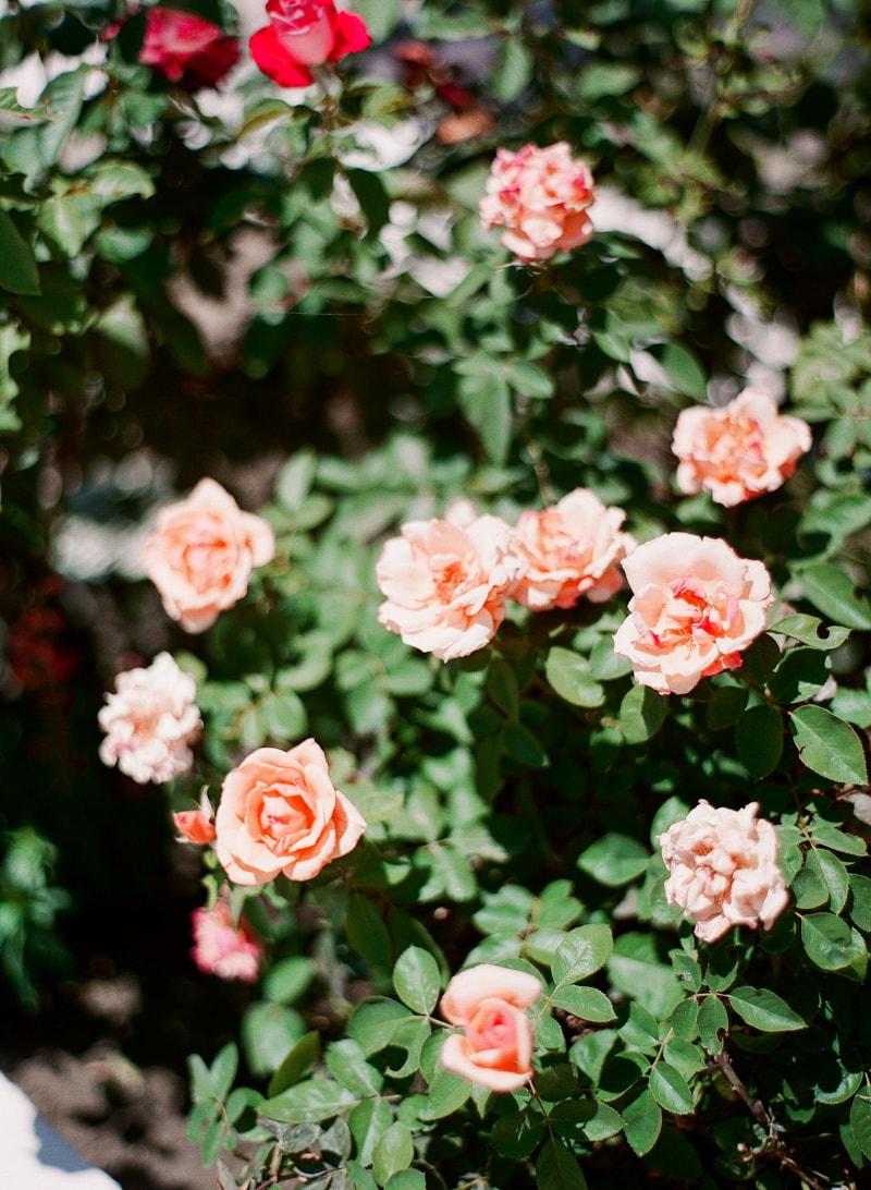merv-griffin-estate-california-wedding-photos-3-min.jpg