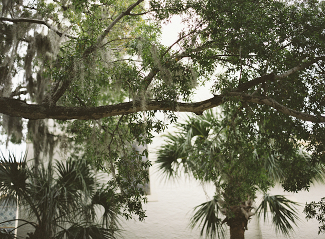 rollins-college-winter-park-florida-engagement-photos-2.jpg