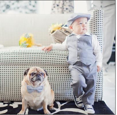 cute-ring-bearer-dog-with-boy.jpg