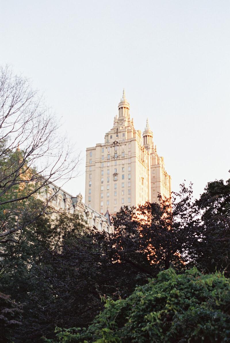 central-park-new-york-engagement-15.jpg