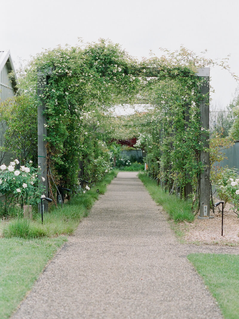 sonoma-california-wedding-fine-art-film-18.jpg