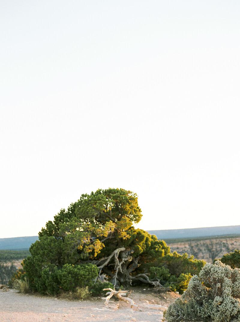 grand-canyon-engagement-fine-art-film-20.jpg