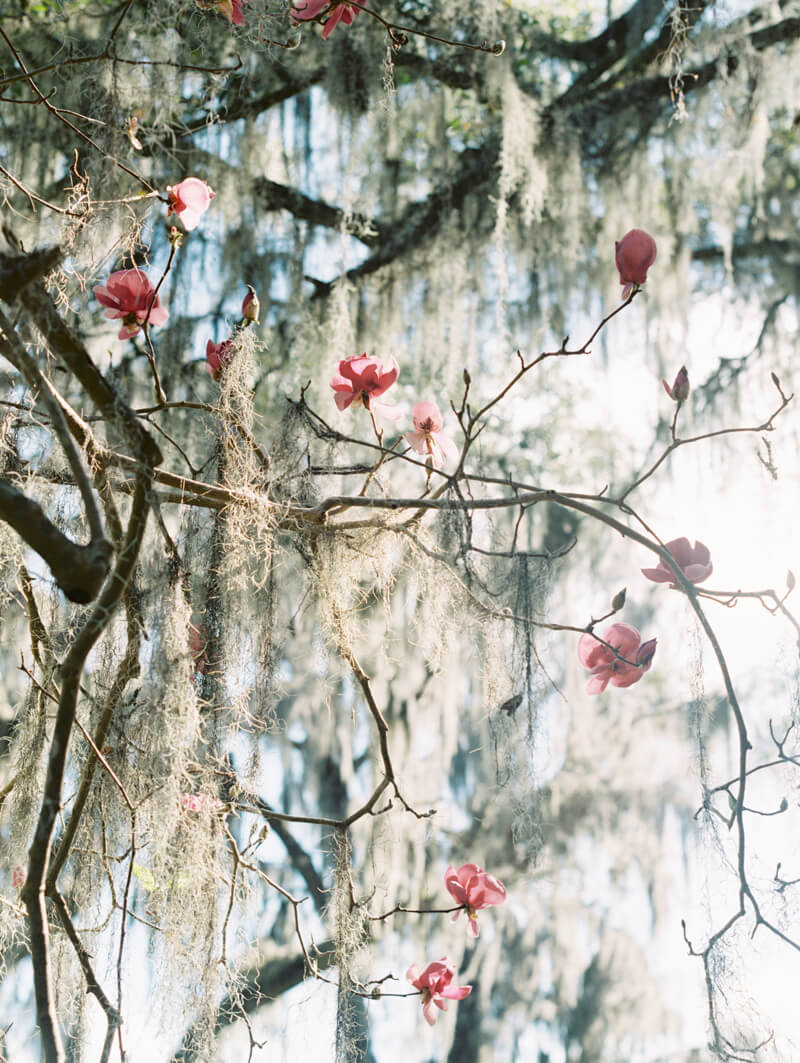 garden-bridal-inspiration-7.jpg